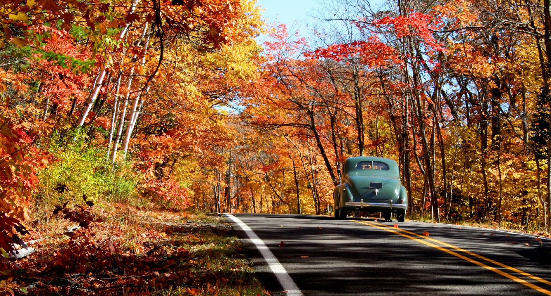 Découvrez la mécanique derrière 5 autos parfaites pour l'automne
